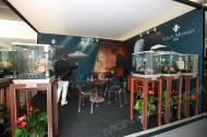 GTE 2012: Pavilion of Louis Moinet watches
