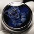 Angular Momentum Tames Tigers. New Pill Box Watch.