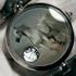 Furious Horse Timepiece by Angular Momentum