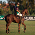 Hublot is a timekeeper of XLII Sotogrande polo tournament