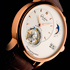 Glashutte Original Presents PanoLunar Tourbillon Watch