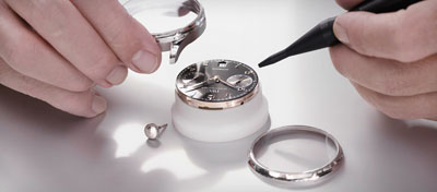 IWC watch assembly