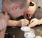 The Process Of Watchmaking