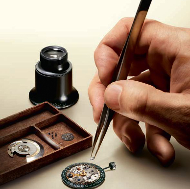 Eterna watch assembly