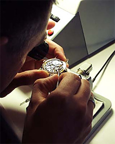 Helmut watch assembly