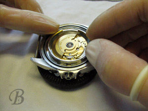 Boshett watch assembly