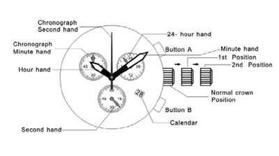 Obaku watches schematic representation