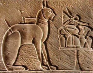 The cult of cat in ancient Egypt