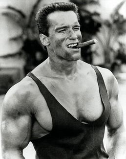 Arnold Schwarzenegger - training program